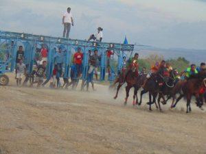 """""""Putra Amarasi"""" Juara I Kelas A Sprint Lomba Pacuan Kuda Kapolda Cup 2018"""