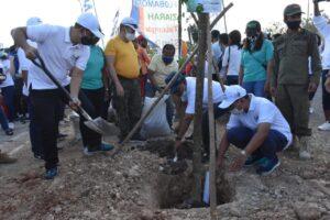 Pihak Ketiga Bertanggungjawab Pelihara Pohon Sampai April 2021