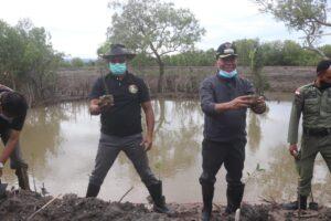 Lestarikan Hutan Mangrove Bupati Kupang – Rektor Undana Lakukan Ini !!