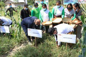 Panen Bawang Merah Lokananta, Gubernur Janji Tingkatkan Hasil Produksi