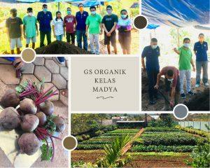 Partai Nasdem Utus 6 pemuda Amarasi Belajar Bertani di GS Organik